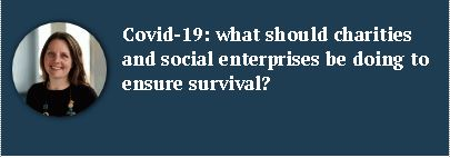 what should charities and social enterprises be doing to ensure survival?